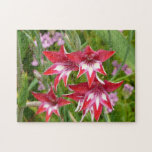 Red and White Gladiolas Summer Garden Floral Jigsaw Puzzle