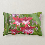 Red and White Gladiolas Summer Garden Floral Lumbar Pillow