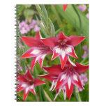 Red and White Gladiolas Summer Garden Floral Spiral Notebook