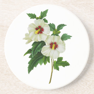 Red and White Hibiscus by Pierre Joseph Redoute Drink Coaster