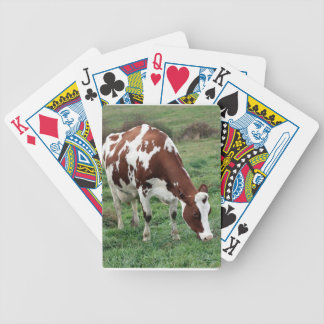 Red and White Holstein grazing Bicycle Playing Cards