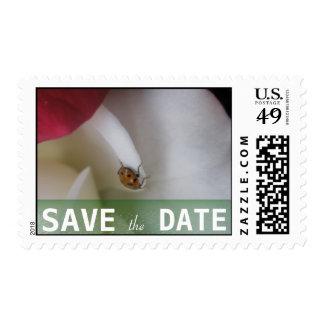 Red and White Ladybug Petals Wedding Postage