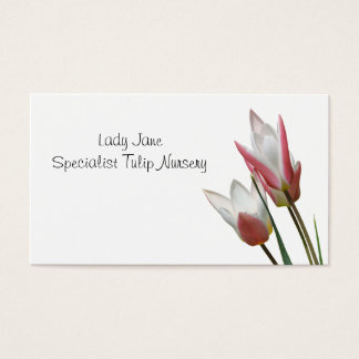 Red and white lily flowered tulips business card