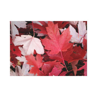 Red and White Maple Leaf Canvas Gallery Wrap Canvas