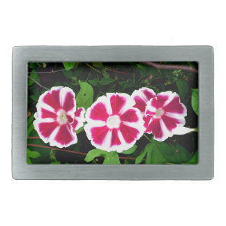 Red and White Morning Glories Rectangular Belt Buckles