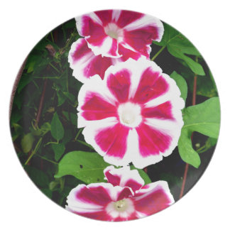 Red and White Morning Glories Melamine Plate