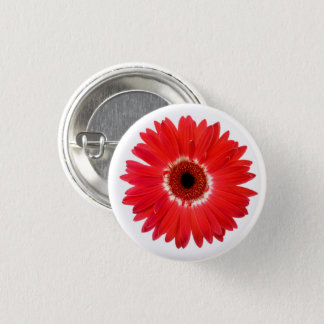 Red and White Multicolor Gerbera Daisy Flower Pinback Button