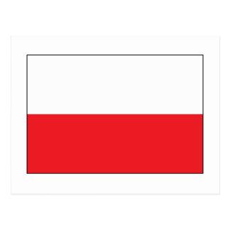 Red and White Polish Flag Postcard