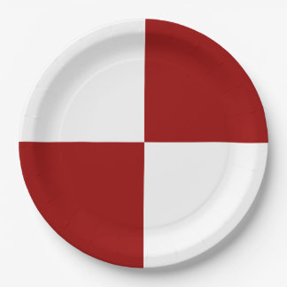 Red and White Rectangles Paper Plate