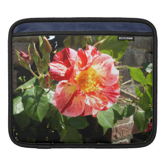 Red And White Rose iPad Sleeve