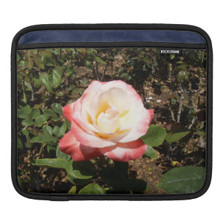 Red And White Rose iPad Sleeves