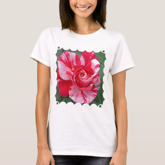 Red and White Rose Ladies T-Shirt