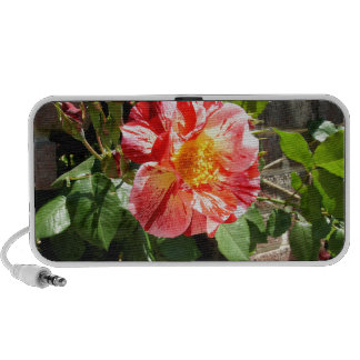 Red And White Rose Portable Speaker