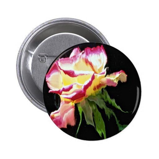 Red and white rose, water glass blue color duplica pinback button