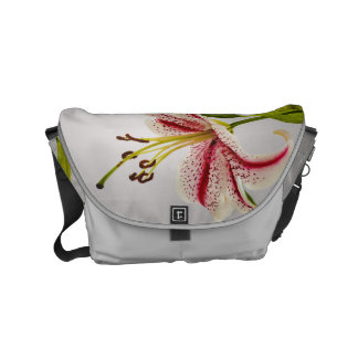 Red and White Star Lily on Shades of Gray Small Messenger Bag