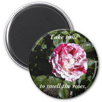 Red and White Striped Rose Magnet