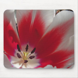 Red and White Tulip Mousepad