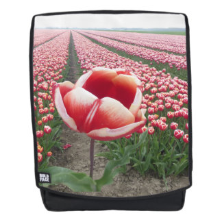 Red and White Tulip on Tulips Field Adult Backpack