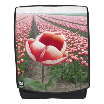 Red And White Tulip On Tulips Field Adult Backpack by Edelhertdesigntravel at Zazzle
