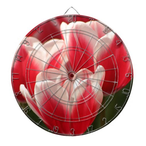 Red and White Tulips Dartboard