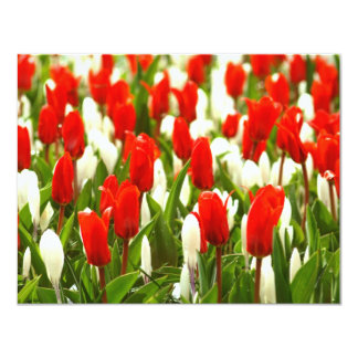 Red and White Tulips 4.25x5.5 Paper Invitation Card