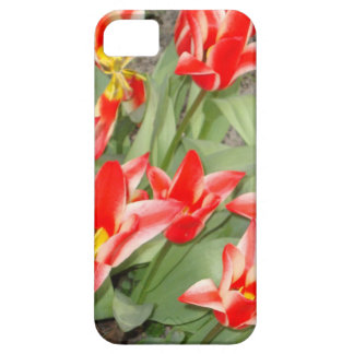 red and white tulips iPhone SE/5/5s case