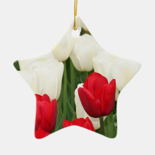 Red and White Tulips Ornament