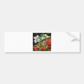 Red and white wild flowers are growing together bumper sticker