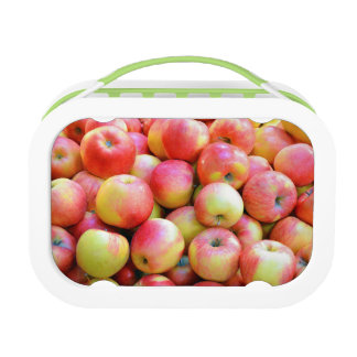 Red and yellow apples print lunchbox
