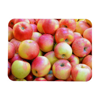 Red and yellow apples print magnet