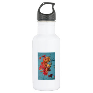 Red and yellow autumn leaves on a blue background stainless steel water bottle
