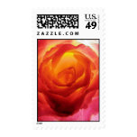 Red and Yellow Bicolor Rose Watercolor Stamp