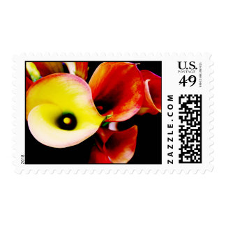 Red and Yellow Calla Lilly Postage