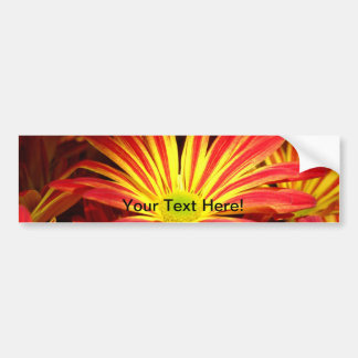 Red and Yellow chrysanthemum flowers customizable Bumper Sticker