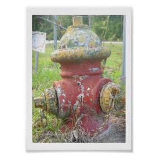 Red and Yellow Fire Hydrant Poster