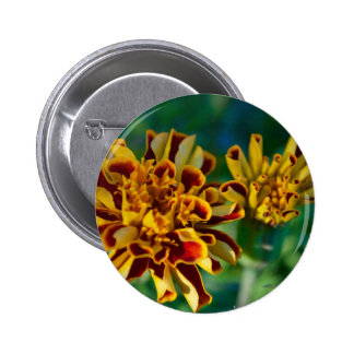 Red and Yellow Flower (Close-up) Button