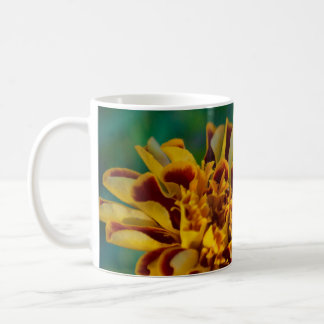 Red and Yellow Flower (Close-up) Coffee Mug