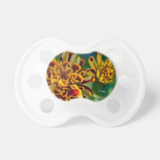 Red and Yellow Flower (Close-up) Pacifier