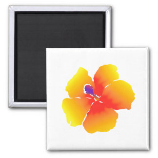 Red and Yellow Hibiscus Bloom 2 Inch Square Magnet