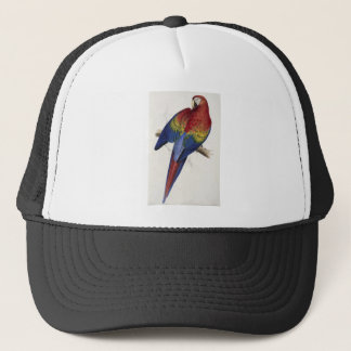 Red and yellow maccaw trucker hat