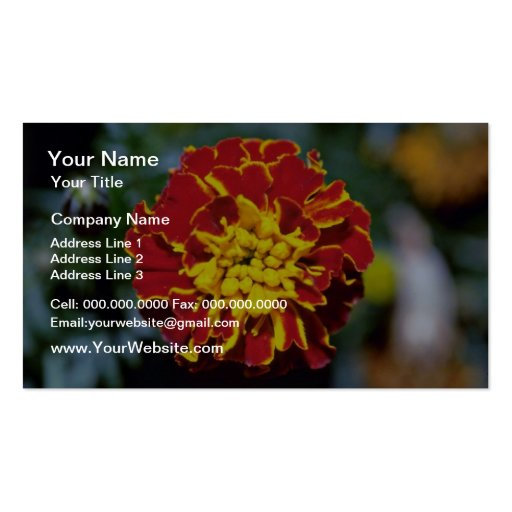 Red And Yellow Marigold flowers Business Card