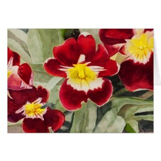 Red and Yellow Miltonia Orchid Greeting Card