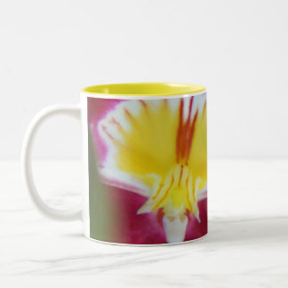 Red and Yellow Orchid Two-Tone Coffee Mug