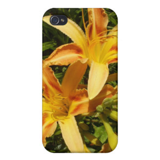 Red and Yellow pansies iPhone 4/4S Cover