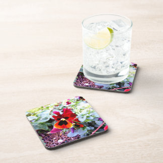 Red And Yellow Pansy Drink Coasters