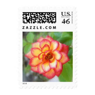 Red and Yellow Rose Stamp