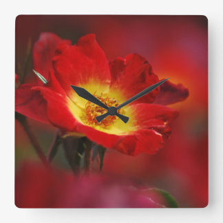 Red and yellow rose square wall clock
