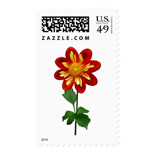 Red and Yellow Single Dahlia Postage
