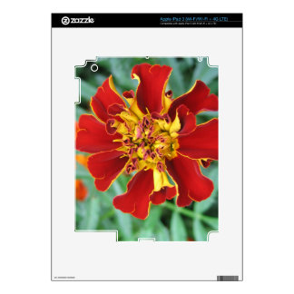Red and Yellow Skins For iPad 3