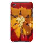 Red and Yellow Tulip Flower Barely There iPod Covers